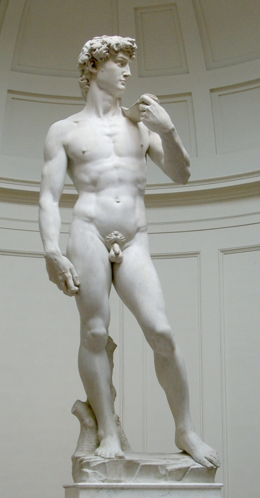 Michelangelo, David, 1501-1504, marble. By Rico Heil (User:Silmaril) (private photo) [GFDL (http://www.gnu.org/copyleft/fdl.html) or CC-BY-SA-3.0 (http://creativecommons.org/licenses/by-sa/3.0/)], via Wikimedia Commons